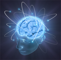 wpid-human_brain_cognition_200-2013-11-3-14-19.png
